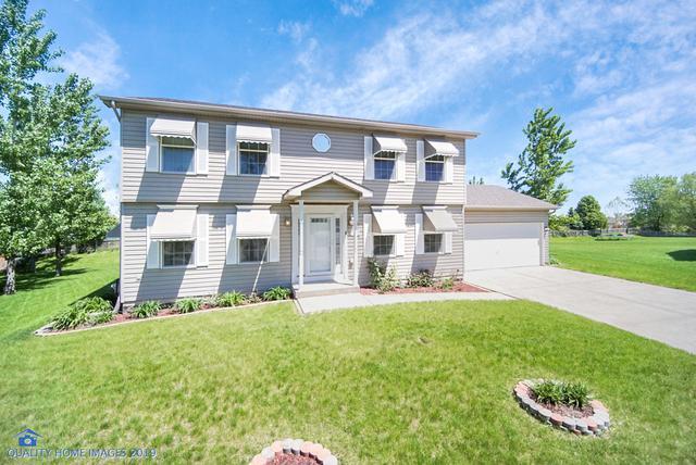 7013 Cottie Drive, Joliet, IL 60431 (MLS #10343829) :: Ani Real Estate
