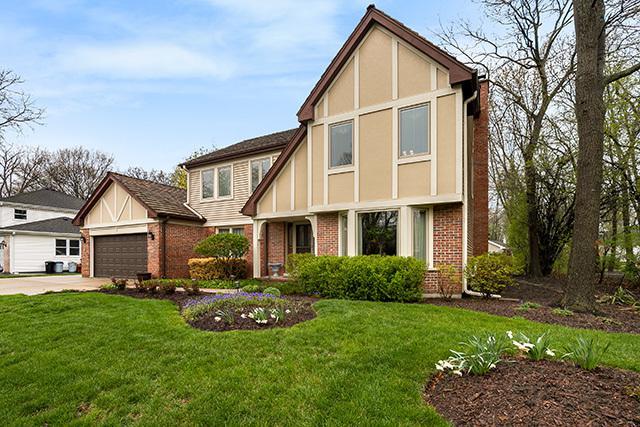 218 Alpine Drive, Lake Zurich, IL 60047 (MLS #10344198) :: Helen Oliveri Real Estate