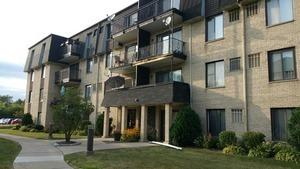 10735 5th Avenue Cutoff Avenue #304, Countryside, IL 60525 (MLS #10344861) :: Domain Realty