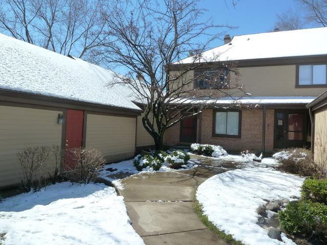 1273 Bristol Lane #1273, Buffalo Grove, IL 60089 (MLS #10344869) :: Helen Oliveri Real Estate
