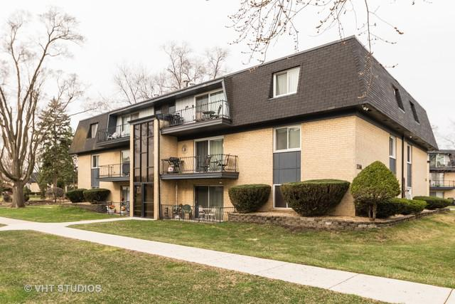 11104 S 84th Avenue 1B, Palos Hills, IL 60465 (MLS #10344871) :: Domain Realty