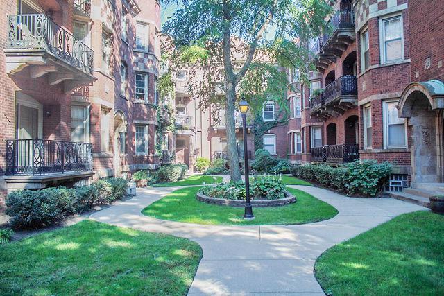 5343 S Harper Avenue #3, Chicago, IL 60615 (MLS #10344954) :: Domain Realty