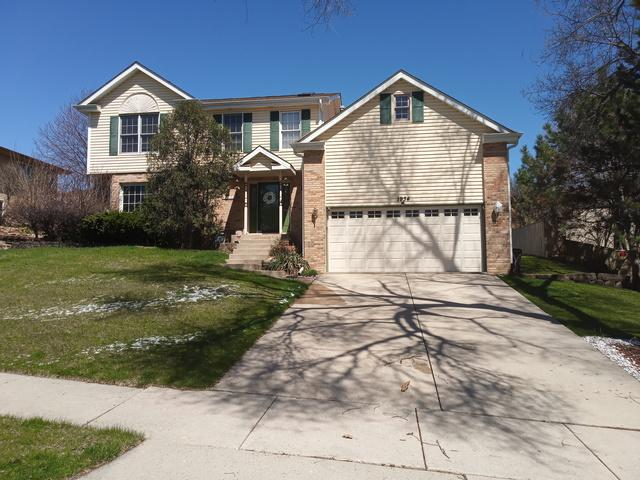 1934 Cara Drive, Crest Hill, IL 60403 (MLS #10345051) :: Domain Realty