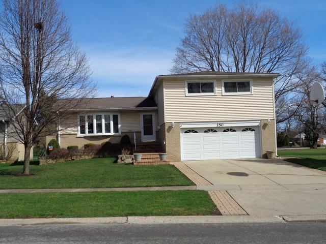 250 Norman Court, Des Plaines, IL 60016 (MLS #10345054) :: Berkshire Hathaway HomeServices Snyder Real Estate