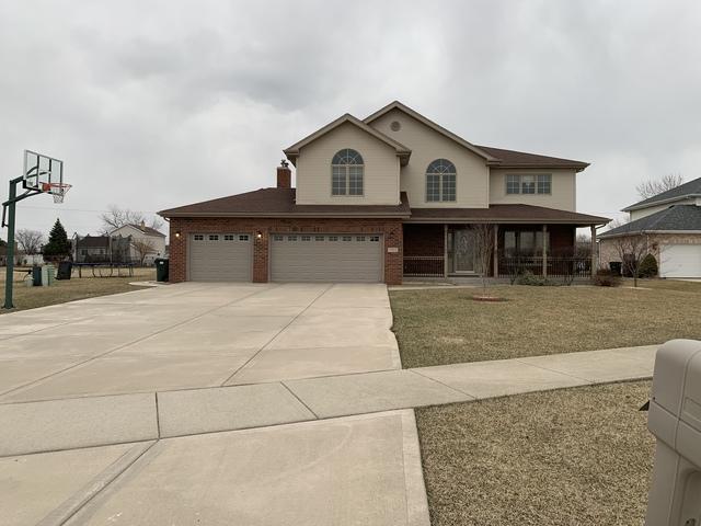 7317 W Braemar Lane, Frankfort, IL 60423 (MLS #10345132) :: Domain Realty