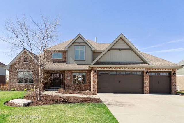 11534 Falls View Lane, Frankfort, IL 60423 (MLS #10345150) :: Domain Realty