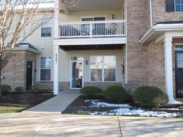 4461 Timber Ridge Court #111, Joliet, IL 60431 (MLS #10345360) :: Helen Oliveri Real Estate