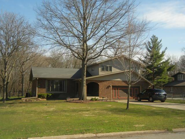 2346 Valley View Lane, Park Forest, IL 60466 (MLS #10345626) :: Leigh Marcus | @properties