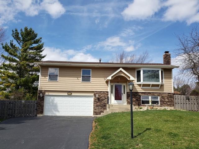 632 S Vista Drive, Algonquin, IL 60102 (MLS #10345903) :: Domain Realty