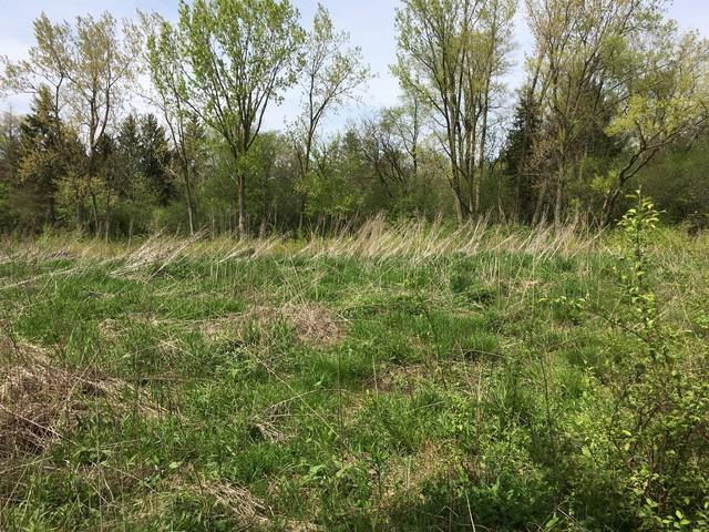 Lot 4 Mundhank Road, South Barrington, IL 60010 (MLS #10345907) :: Domain Realty
