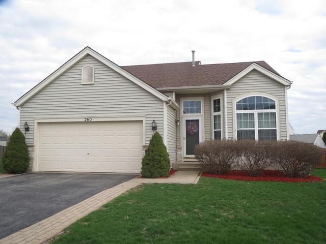 260 Switchgrass Drive, Minooka, IL 60447 (MLS #10346449) :: Helen Oliveri Real Estate