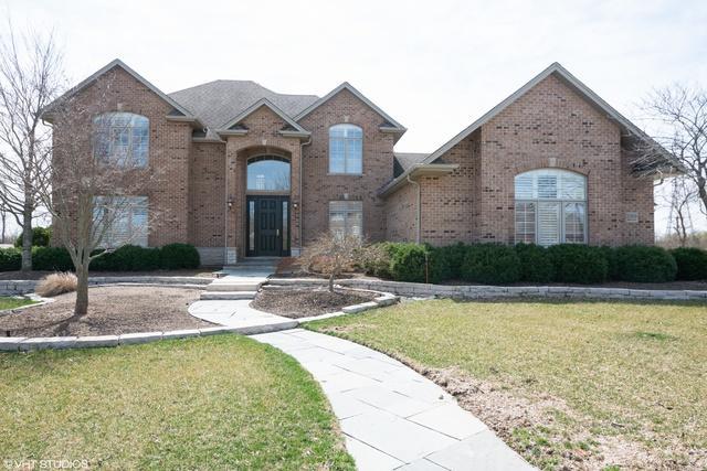 22656 Hunters Trail, Frankfort, IL 60423 (MLS #10346598) :: Helen Oliveri Real Estate