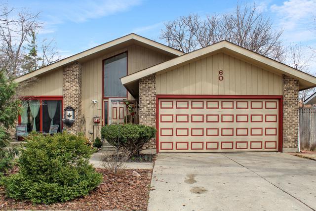 60 Berkshire Drive, Crystal Lake, IL 60014 (MLS #10346631) :: Helen Oliveri Real Estate