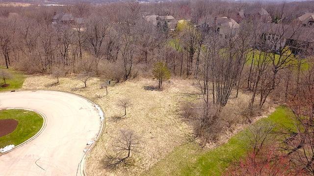 3102 Hawthorne Hill Lane, Carpentersville, IL 60110 (MLS #10346641) :: John Lyons Real Estate