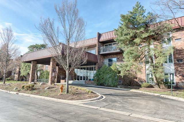 1041 W Ogden Avenue #326, Naperville, IL 60563 (MLS #10346713) :: Helen Oliveri Real Estate