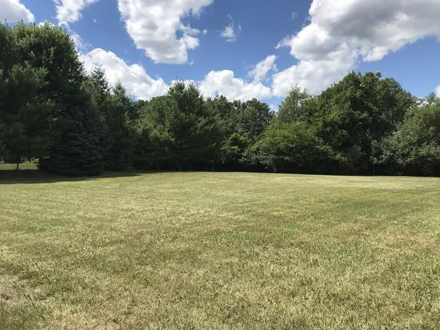 504 Bluffs Edge Drive, Mchenry, IL 60051 (MLS #10346796) :: BN Homes Group