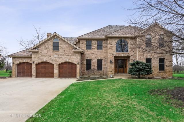 10803 Royal Porthcawl Drive, Naperville, IL 60564 (MLS #10346907) :: Helen Oliveri Real Estate