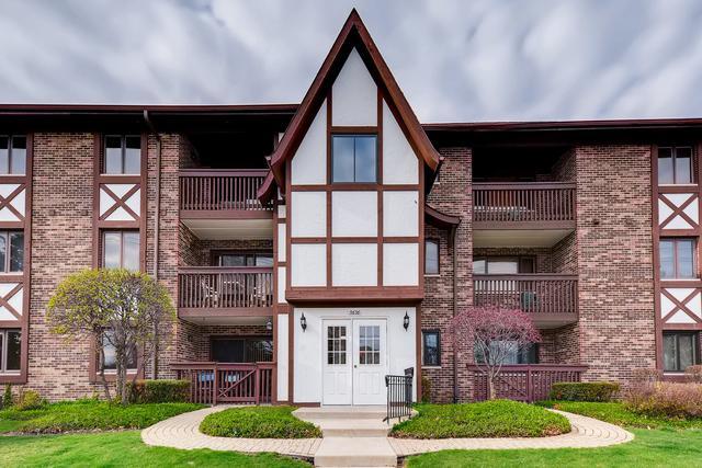 5636 W 103rd Street #101, Oak Lawn, IL 60453 (MLS #10346993) :: Domain Realty