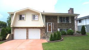 1170 Saylesville Lane, Schaumburg, IL 60193 (MLS #10347087) :: Domain Realty