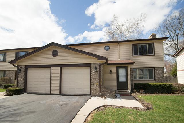 1324 S Mallard Lane #36, Mount Prospect, IL 60056 (MLS #10347332) :: Domain Realty