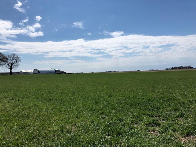 LOT 104 Cr 600 E, Fisher, IL 61843 (MLS #10347641) :: Janet Jurich Realty Group