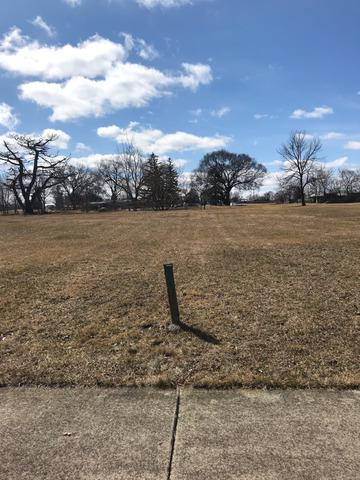 Lot 34 Fairway Drive, Beecher, IL 60401 (MLS #10347955) :: Century 21 Affiliated