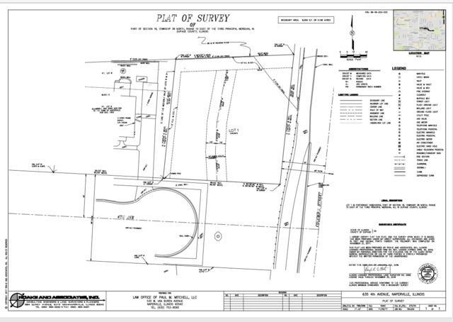 635 E 4th Avenue, Naperville, IL 60540 (MLS #10347963) :: Domain Realty