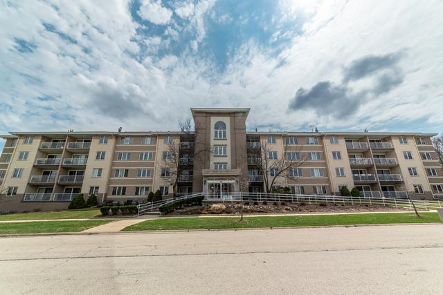 440 E Montrose Avenue #212, Wood Dale, IL 60191 (MLS #10348186) :: Leigh Marcus | @properties