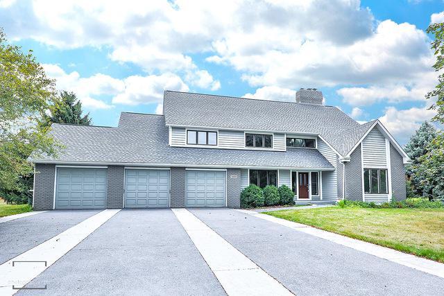 24101 Royal Worlington Drive, Naperville, IL 60564 (MLS #10348251) :: Helen Oliveri Real Estate