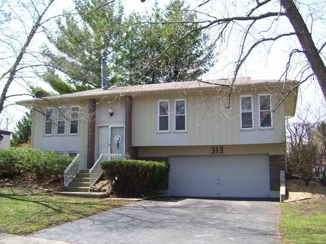 313 Pacific Drive, Bolingbrook, IL 60440 (MLS #10348305) :: Angela Walker Homes Real Estate Group