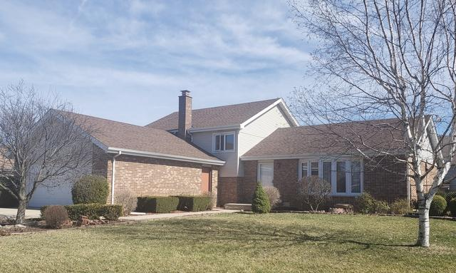 9221 Wheeler Drive, Orland Park, IL 60462 (MLS #10348367) :: Century 21 Affiliated
