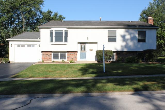 8128 Leawood Lane, Woodridge, IL 60517 (MLS #10348389) :: BNRealty