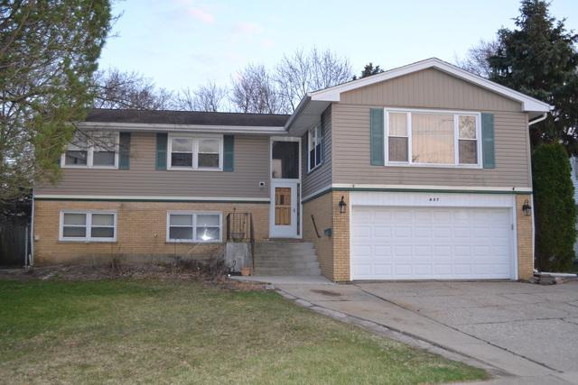 437 W Dorset Avenue, Palatine, IL 60067 (MLS #10348641) :: Domain Realty