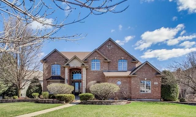 3660 Hector Lane, Naperville, IL 60564 (MLS #10348686) :: Domain Realty