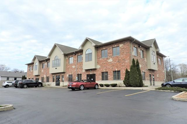 100 Batson Court #206, New Lenox, IL 60451 (MLS #10348760) :: Domain Realty