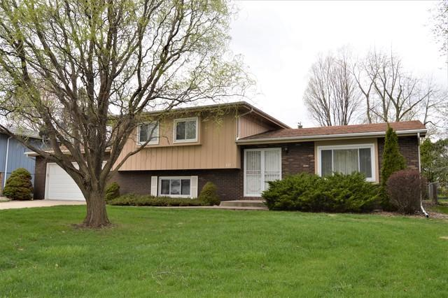 117 S Orr Drive, Normal, IL 61761 (MLS #10348787) :: BNRealty