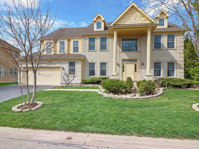 9 Shoal Creek Court, Lake In The Hills, IL 60156 (MLS #10348829) :: Property Consultants Realty