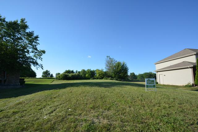 321 Pine Street, Beecher, IL 60401 (MLS #10349013) :: Helen Oliveri Real Estate