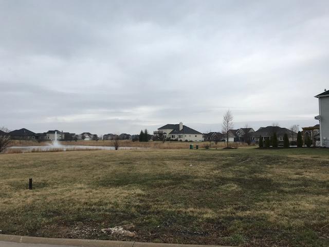15712 Brookshore Drive, Plainfield, IL 60544 (MLS #10349051) :: Century 21 Affiliated