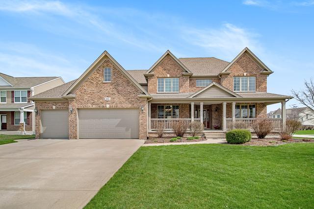 25002 Chalk Hill Circle, Plainfield, IL 60544 (MLS #10349506) :: Helen Oliveri Real Estate