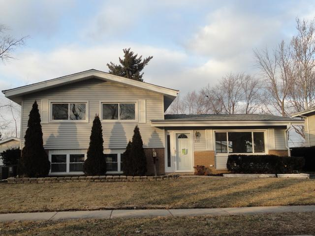 222 Berry Street, Park Forest, IL 60466 (MLS #10349665) :: Janet Jurich Realty Group