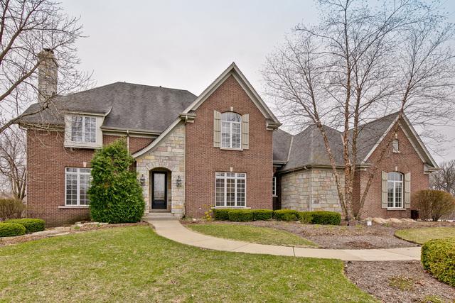22206 N Prairie Lane, Kildeer, IL 60047 (MLS #10350000) :: Helen Oliveri Real Estate