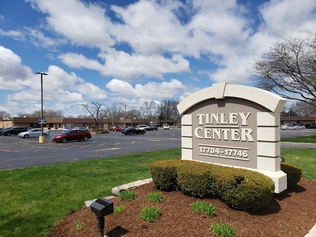 17732 Oak Park Avenue D, Tinley Park, IL 60477 (MLS #10350164) :: Century 21 Affiliated