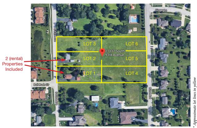 21325 S 93rd Avenue, Frankfort, IL 60423 (MLS #10350183) :: Baz Realty Network | Keller Williams Preferred Realty