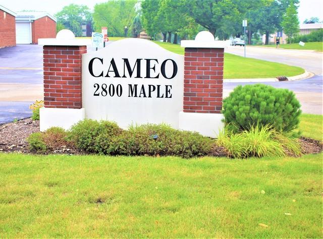 2800 Maple Avenue 25C, Downers Grove, IL 60515 (MLS #10350184) :: Century 21 Affiliated