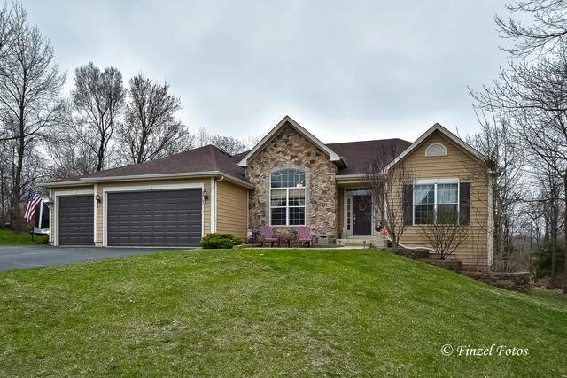 11121 Thrush Creek Drive, Richmond, IL 60071 (MLS #10350314) :: Helen Oliveri Real Estate