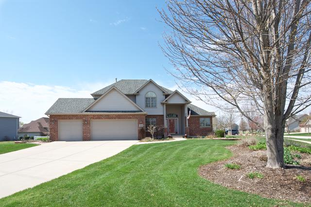 26144 S Rachael Drive, Channahon, IL 60410 (MLS #10350421) :: Helen Oliveri Real Estate