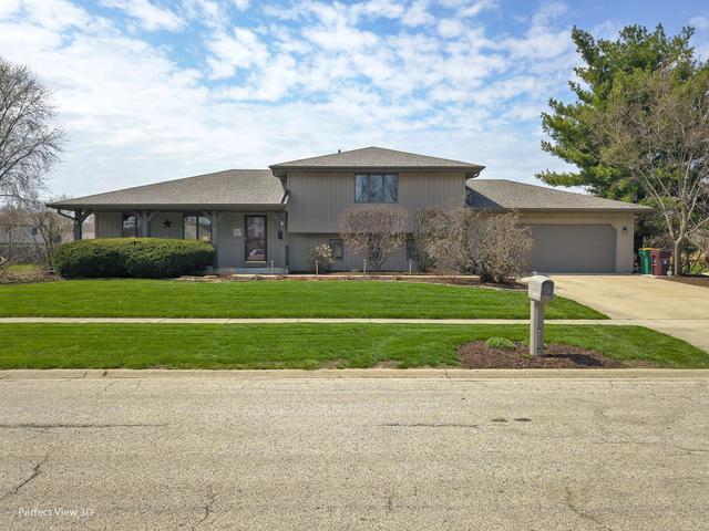 24416 S Rock Ridge Court, Channahon, IL 60410 (MLS #10351189) :: Century 21 Affiliated