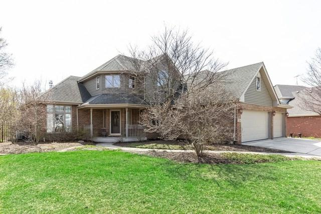 226 Deerfield Court, New Lenox, IL 60451 (MLS #10351234) :: Century 21 Affiliated