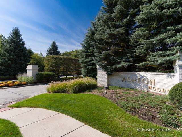 6 Shenandoah Court, Burr Ridge, IL 60527 (MLS #10351441) :: The Wexler Group at Keller Williams Preferred Realty